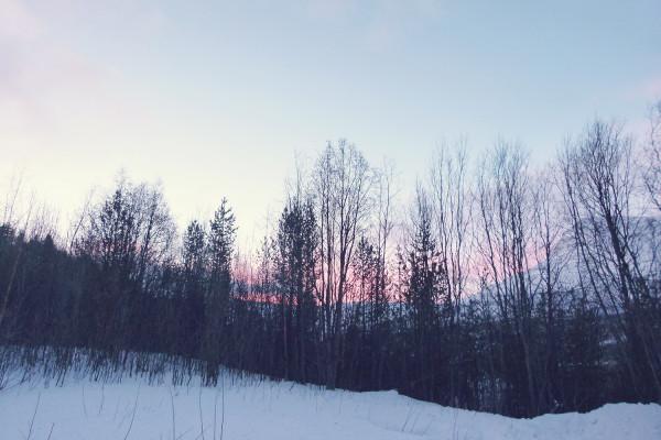 Norway Pink Sky