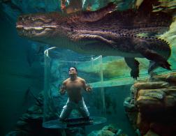 The Top 8 Water Activities of Australia