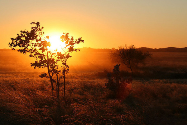 outback northern territory