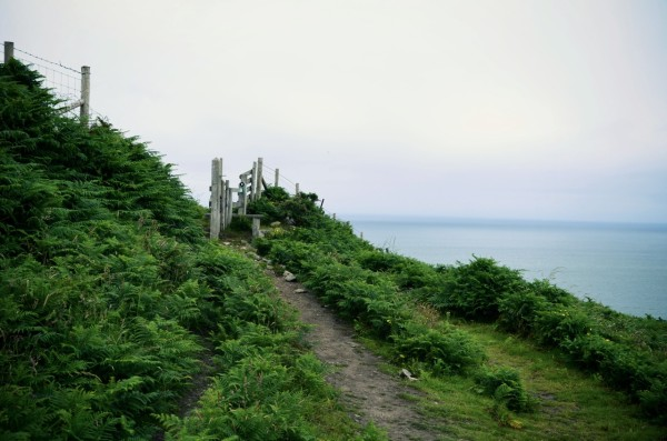 hiking_trail_pembrokeshire