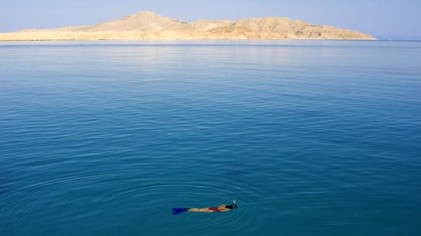red sea sophie saint travelettes