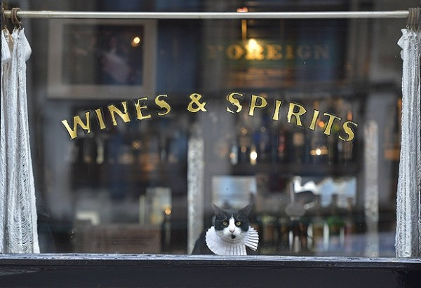 Cat in London pub window - Source Reuters