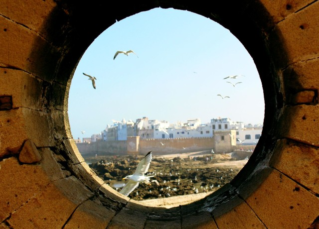 About Camels & Kitesurfers – Memories of Essaouira.