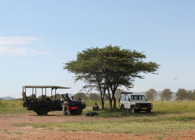 Luxury Safari in the Serengeti