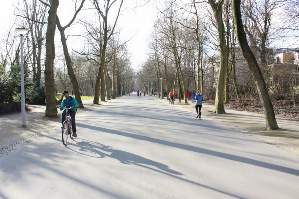 Cycling in Amsterdam in Winter - Frances M Thompson