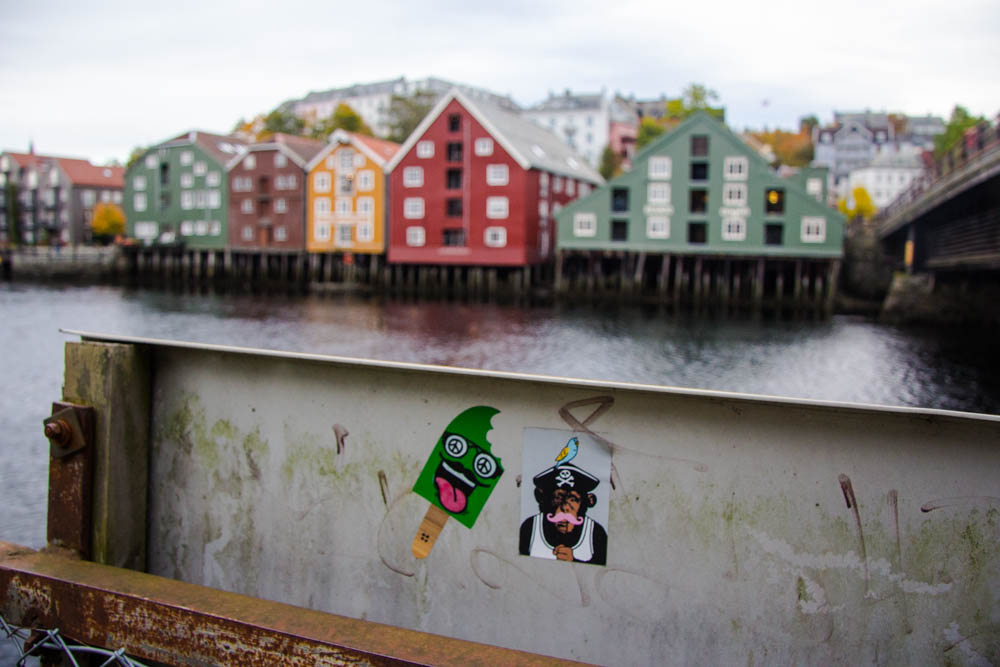 Things to do in Trondheim-20