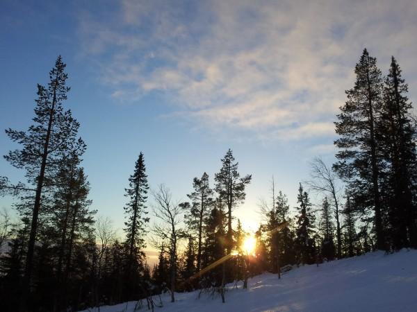 Winter Travel Wishlist by Frances M Thompson