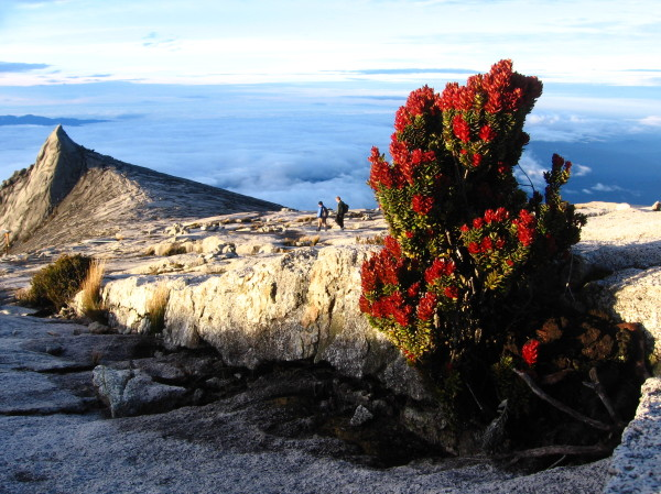 Gunung_Kinabalu