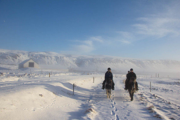 Winter Things to do in Iceland 9