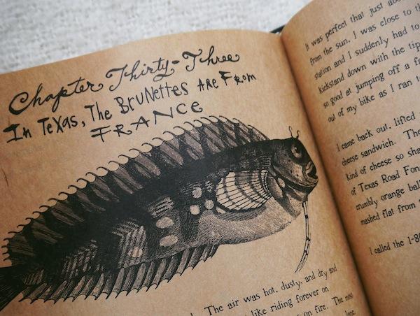 erika lopez flaming iguanas travelettes 2