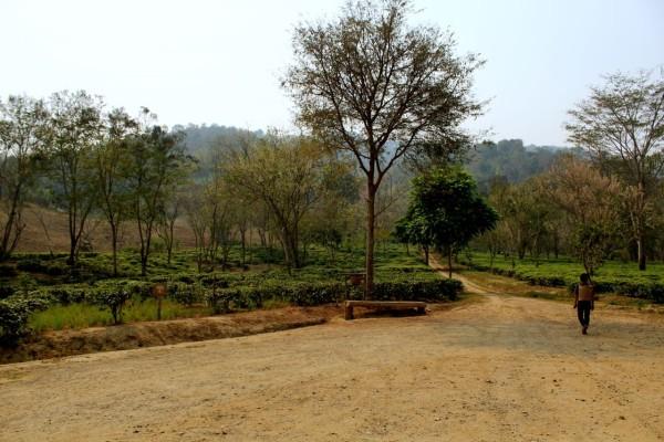 chiang mai_hill tribes_trekking_travelettes_annika ziehen_thailand - 13