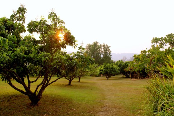chiang mai_hill tribes_trekking_travelettes_annika ziehen_thailand - 19