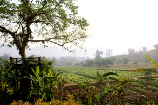 chiang mai_hill tribes_trekking_travelettes_annika ziehen_thailand - 21