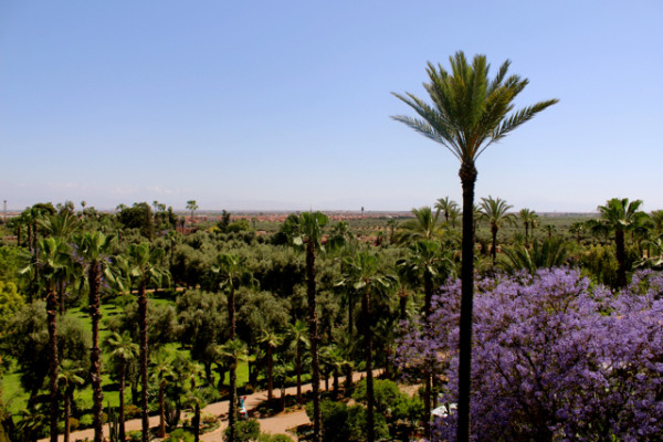 la mamounia_marrakech_travelettes_annika ziehen - 05