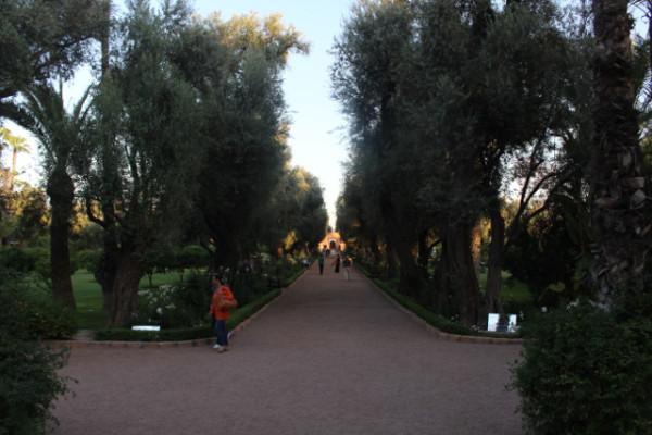 la mamounia_marrakech_travelettes_annika ziehen - 06