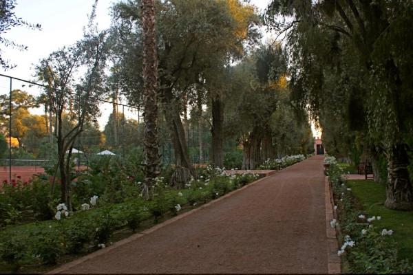 la mamounia_marrakech_travelettes_annika ziehen - 25