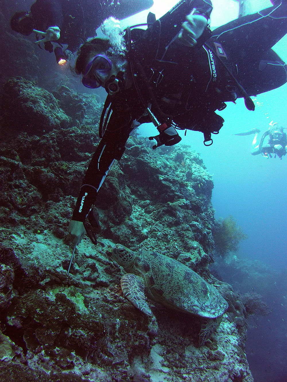 Travelettes » » The Travelettes Guide To Diving