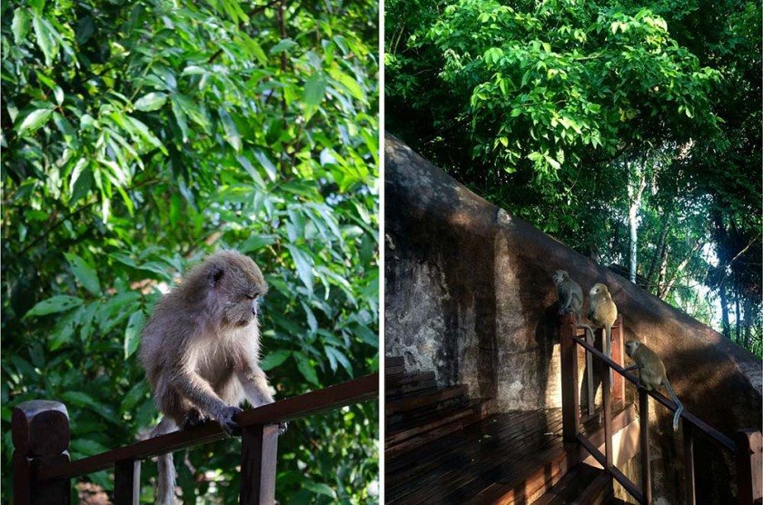 japamalaresort-tioman-malaysia-travelettes20150926_0626