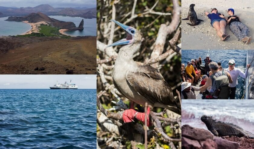 10 Essential Experiences in Ecuador - Galapagos Cruise Metropolitan Tourisn Santa Cruz, Kathi Kamleitner, Travelettes