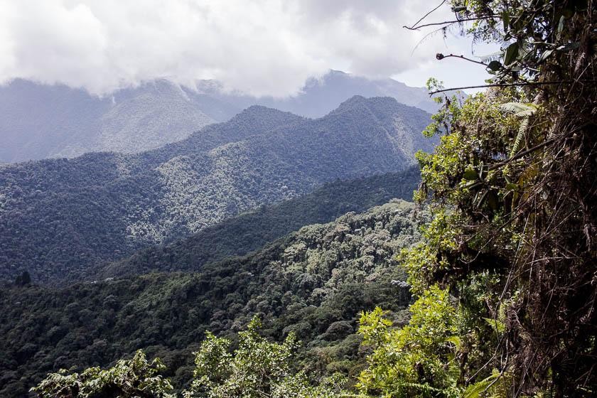 The Travelettes Guide to Quito - Bellavista Cloudforest 4