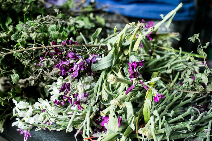 The Travelettes Guide to Quito - Old Town Herbs 1