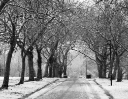 The Travelettes Winter Reading List 2015