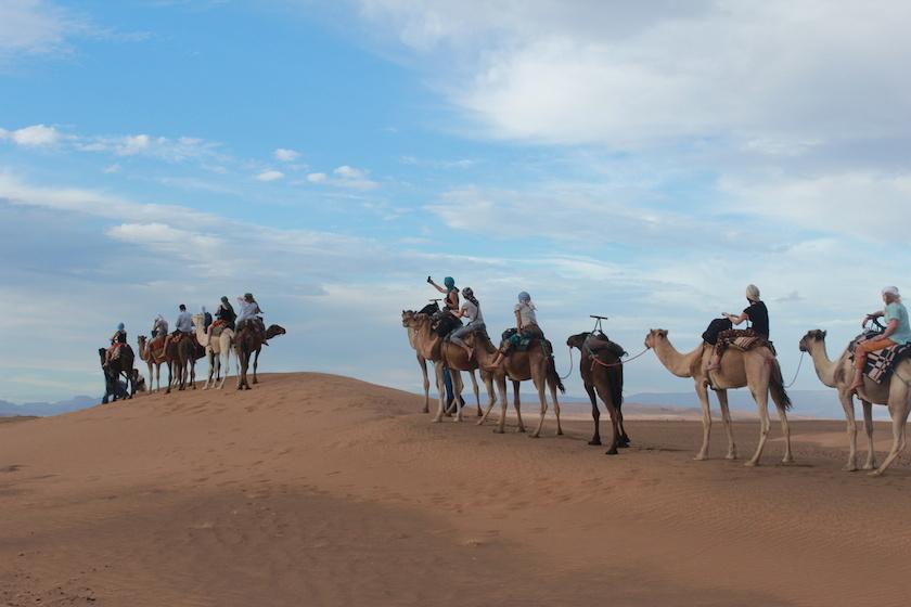travel talk tours morocco