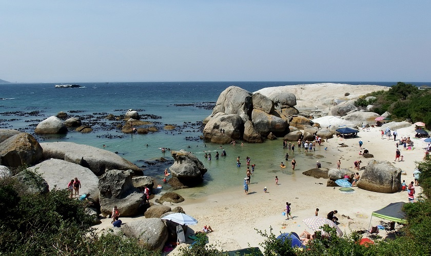 The Beaches of Cape Town - Boulders 1