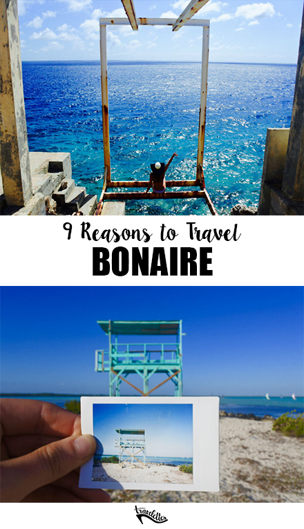 9 Reasons to Travel Bonaire - Pin, 2 images copy