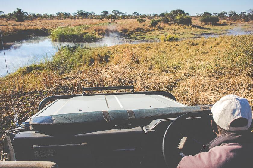 Budget Safari - Kafue National Park - Kathi Kamleitner - Game Drive