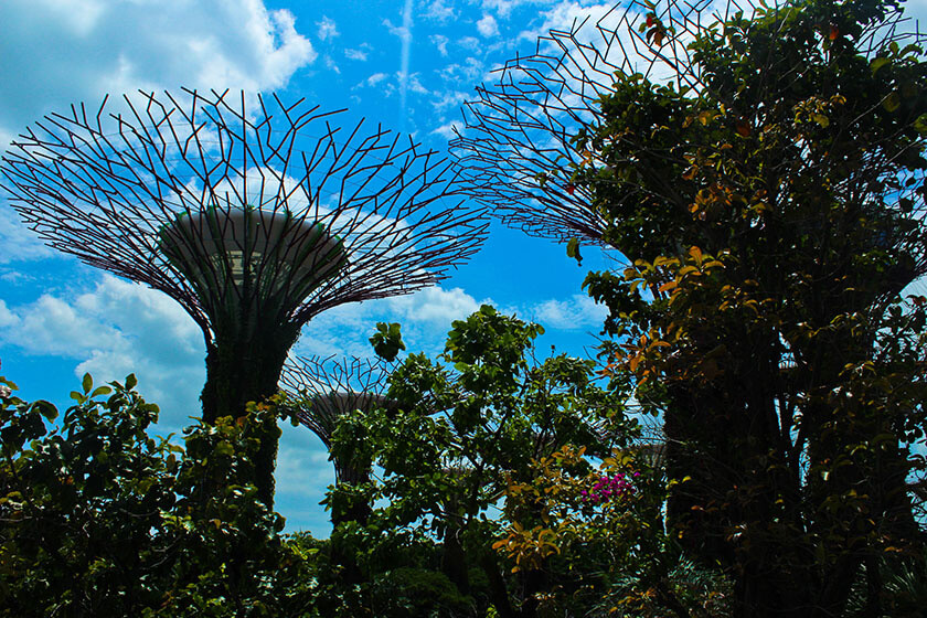 Garden by the bay-travelettes02