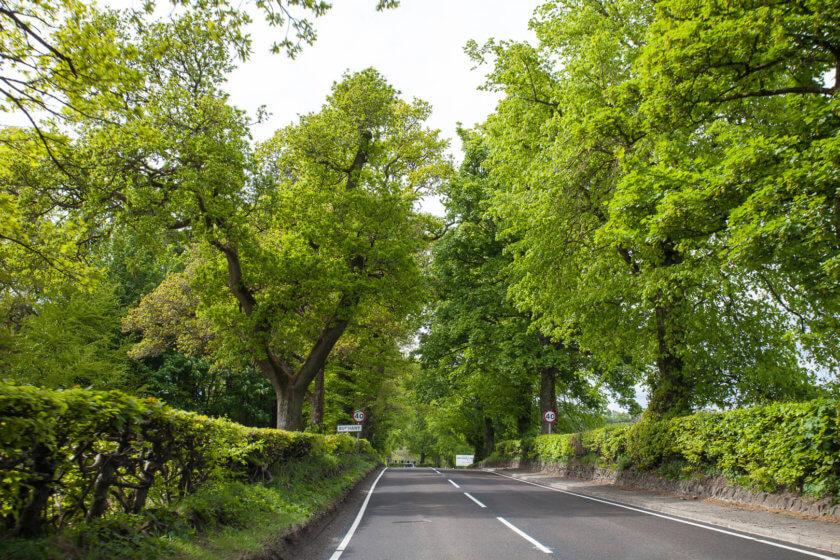 A road trip in Scotland