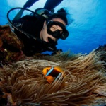 Scuba diving in Micronesia