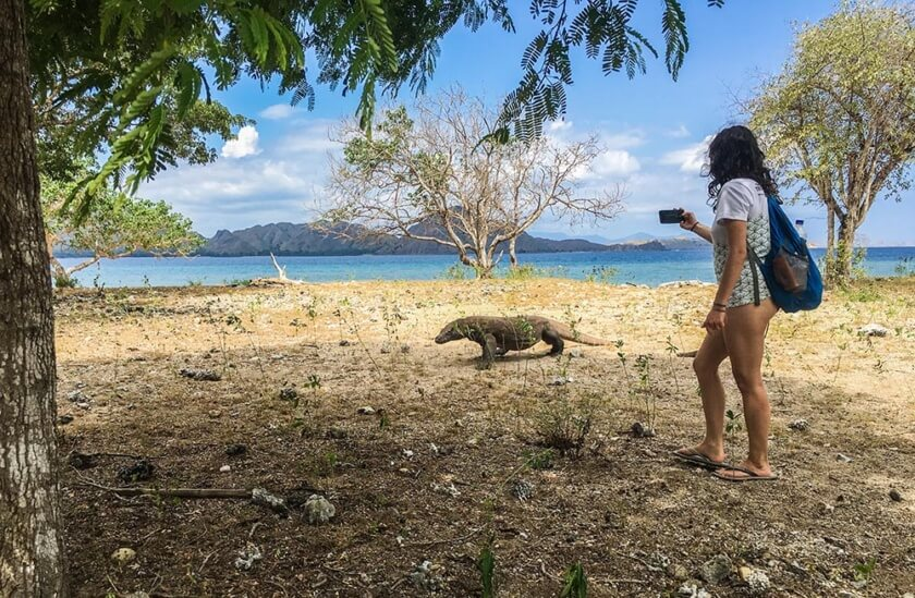 komodo_indonesia_travelettes20160823_2564