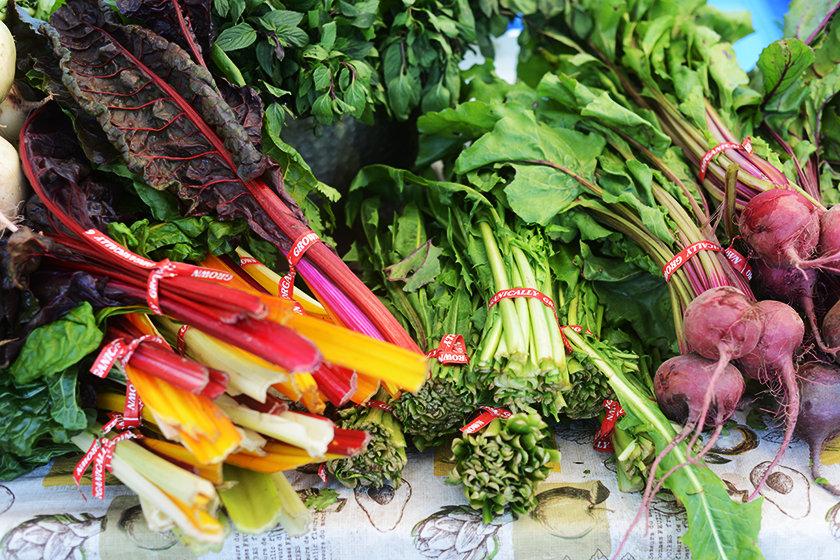 tabea-mathern-toronto-farmers-market
