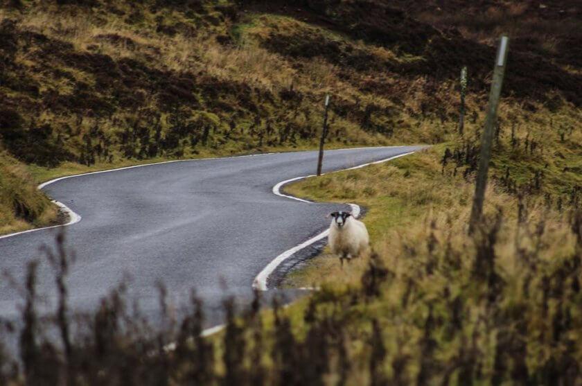 visit-scotland_-travelettes_annika-ziehen20161113_0030