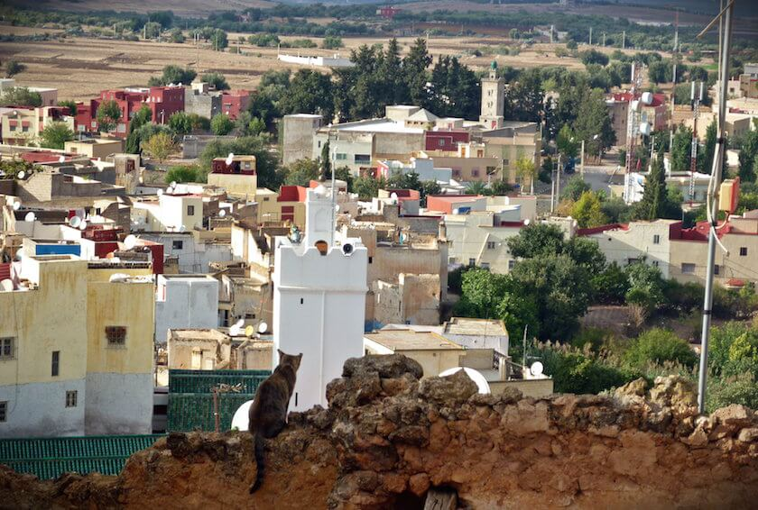 A trip to Bhalil - Finding what Morocco really is about
