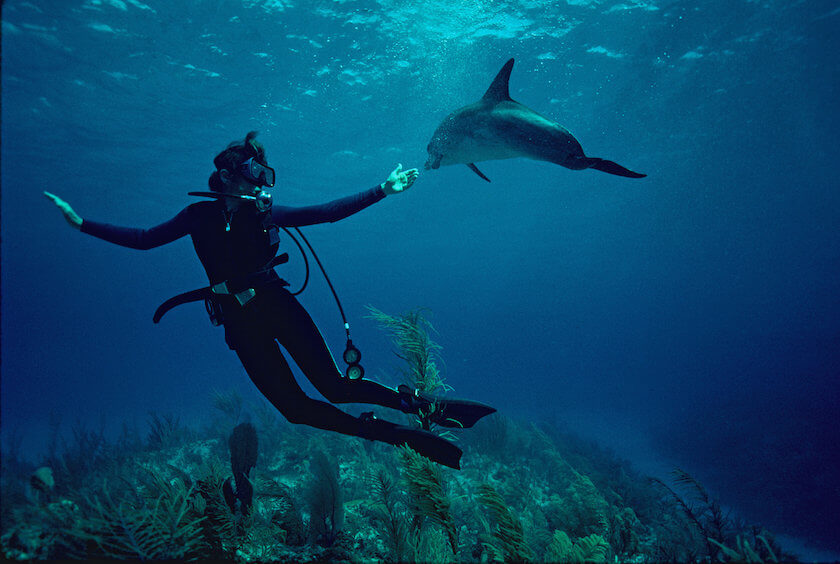Have you ever heard about the scientist Sylvia Earle? If your answer is no, this is your chance to find out everything about her and the Mission Blue project.