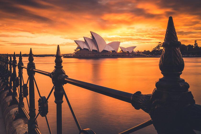 Dear Sydney, I love you!