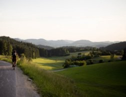 8 Reasons to Visit Linz and Upper Austria