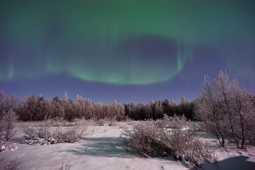 Winters are dark & cold up north, but these 10 experiences - from dog sledding to northern lights spotting - will make Sweden in winter an unforgettable holiday!