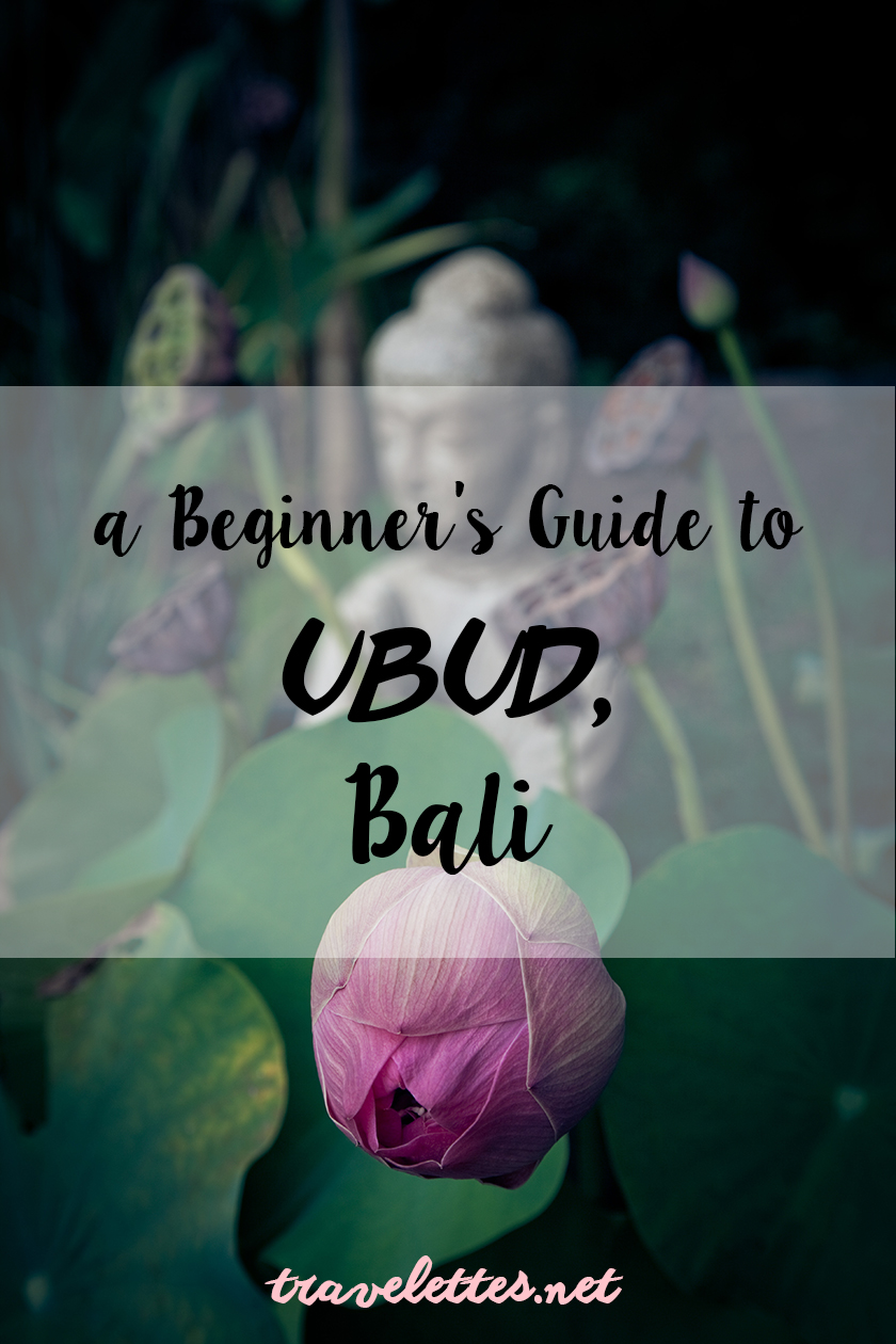 Heading to Bali for the first time? Then you shouldn't miss a visit in Ubud the perfect little town for jungle life, great food, yoga and monkey business.