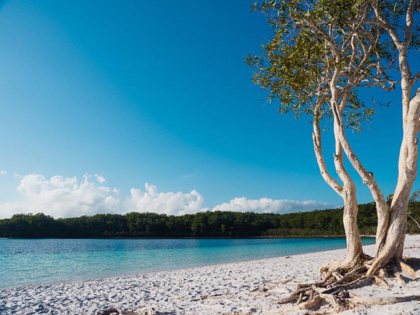 Lake McKenzie Beach Fraser Island