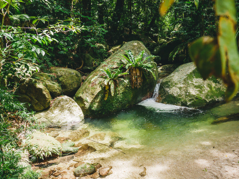 Mossman Gorge Swimming Hole Queensland