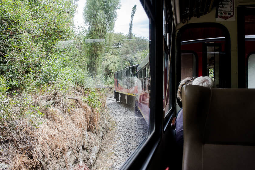 The lush greenery surrounding the tracks of Tren de la Libertad in Ecuador.