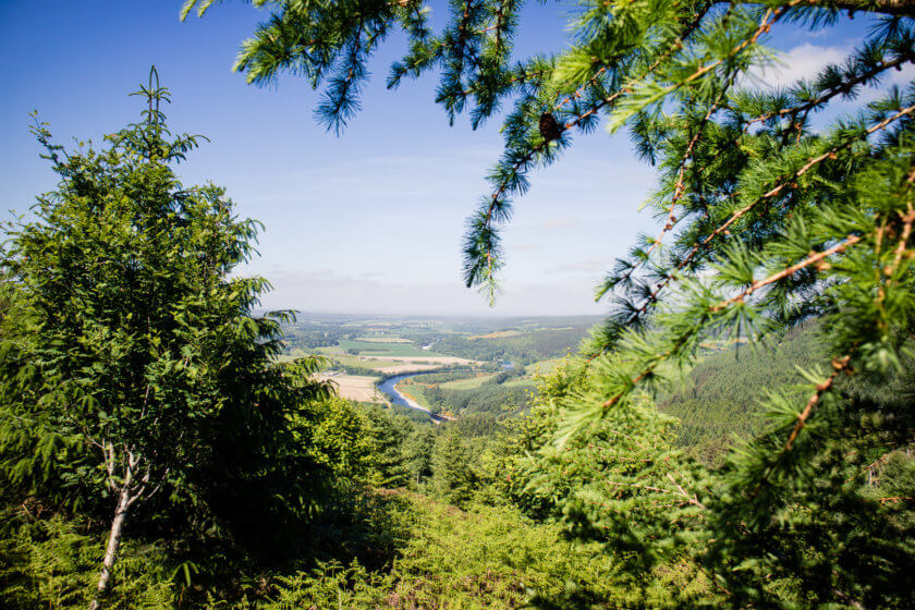 The view from Ben Aigan Forest towards the sea on the north coast of Scotland.