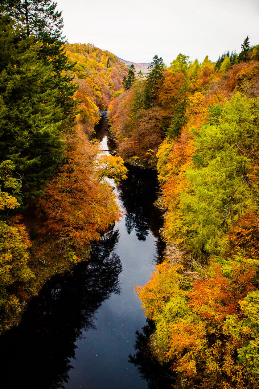 Fall foliage near Killiecrankie