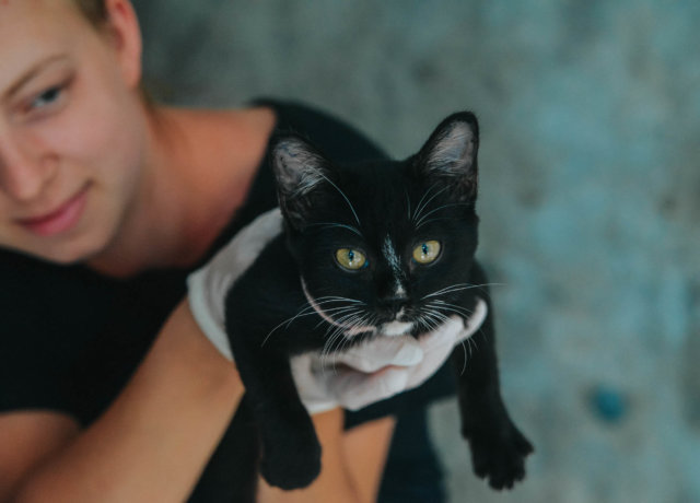 Visit a Totally Paw-some Charity in Thailand: Lanta Animal Welfare