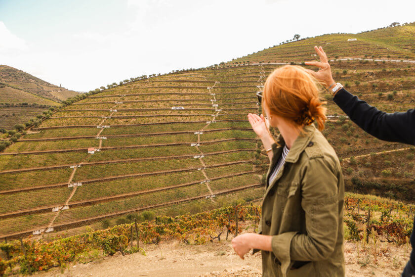 Picture Perfect Wine Country… in Portugal
