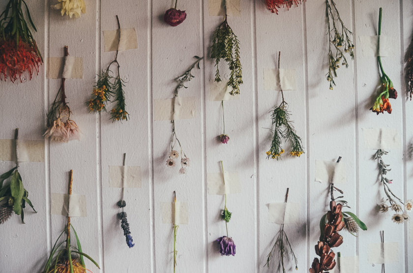 Fynbos Fun at Cape Town's Most Colourful Workshop